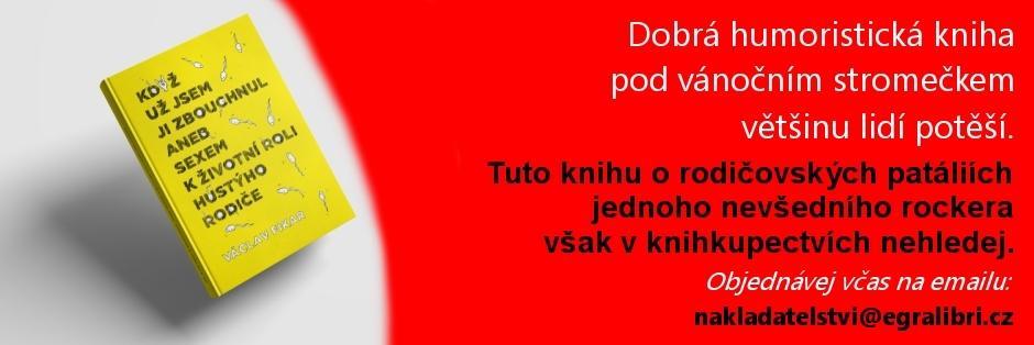 kniha4