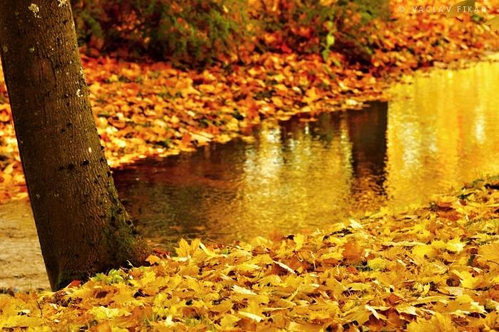 Podzim v Mariánských Lázních