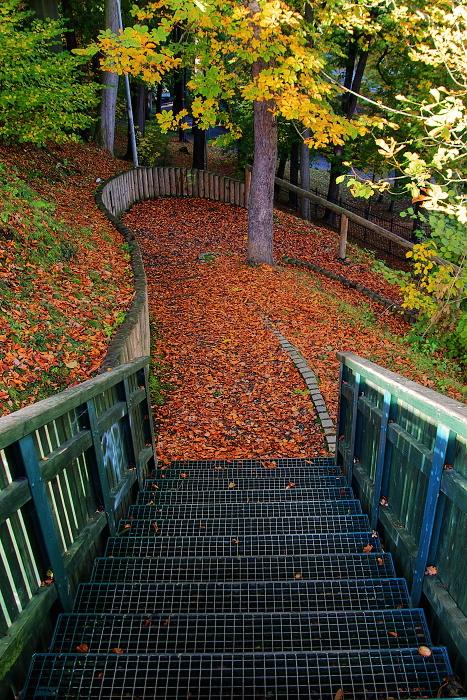 cheb - krajinka - podzim (2)