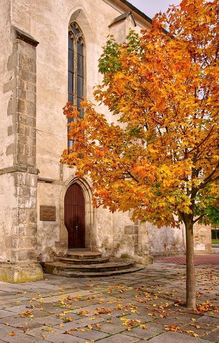 podzim 11