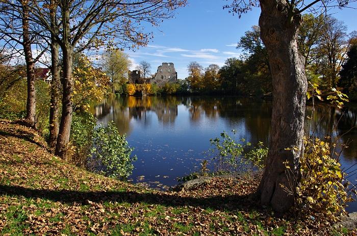 starý rybník 3