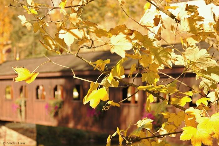 Podzim v Chebu